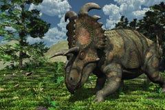 Cena pré-histórica com Albertaceratops Fotografia de Stock