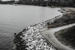 Cena preta & branca de Rocky Shoreline e de uma praia arborizada Imagem de Stock Royalty Free
