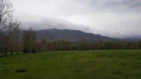 Cena primitiva do leste da natureza de Tennessee Sevierville Pigeon Forge Gatlinburg das montanhas fumarentos da angra de Cades Imagens de Stock