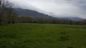 Cena primitiva do leste da natureza de Tennessee Sevierville Pigeon Forge Gatlinburg das montanhas fumarentos da angra de Cades Imagens de Stock Royalty Free