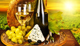 Cena romántica del vino y del queso al aire libre Fotos de archivo libres de regalías