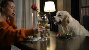 Cena romántica para la hembra de dos personas y el animal doméstico del perro almacen de video