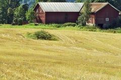 Cena rural Imagem de Stock