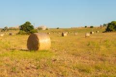 Cena rural da paisagem dos pacotes de feno no verão Imagens de Stock Royalty Free