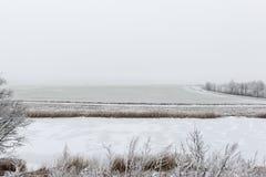 Cena rural do inverno com névoa e campos brancos Fotos de Stock Royalty Free