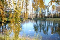 Cena sonhadora do lago fotos de stock