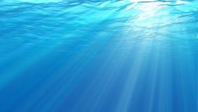 Cena subaquática Grande fundo marinho popular video estoque