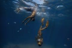 Cena subaquática com peixes Imagens de Stock Royalty Free