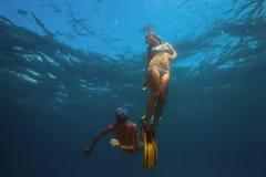 Cena subaquática com peixes Foto de Stock Royalty Free