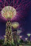 Cena super da noite das árvores em jardins de Singapura pela baía imagem de stock