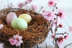 Cena temático da vida do feriado da Páscoa ainda na luz natural Imagens de Stock Royalty Free