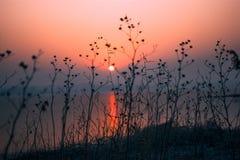 Cena tranquilo do nascer do sol vermelho calmo da manhã fotografia de stock