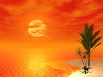 Cena tropical bonita Fotografia de Stock