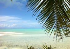 Cena tropical em Fiji com as palmeiras no por do sol pelo oceano Fotografia de Stock Royalty Free