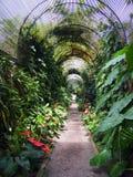 Cenador arqueado largo en un parque llenado de las plantas tropicales y de las flores típicas de parques en Tenerife España imagen de archivo
