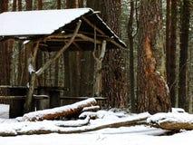 Cenador en bosque Fotografía de archivo libre de regalías