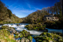 Cenarth Falls. Small waterfall running through Welsh country side Royalty Free Stock Image