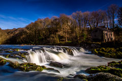 Cenarth Falls. Small waterfall running through Welsh country side Royalty Free Stock Images