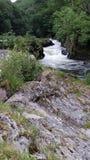 Cenarth falls Stock Image
