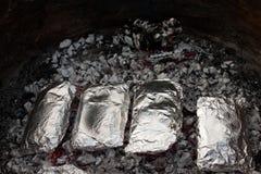 Cenas (cercanas - para arriba) Foto de archivo libre de regalías