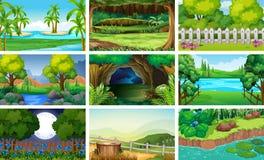 Cenas diferentes da floresta e do rio Fotos de Stock Royalty Free