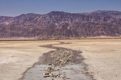 Cenas do deserto Foto de Stock