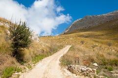 Cendrée dans la campagne aride et stérile méditerranéenne Images stock