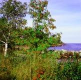 Cendre de montagne et lac Supérieur Image libre de droits
