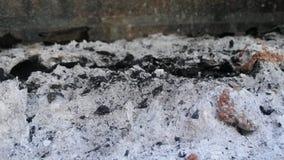 Cendres de charbon de bois Photos stock