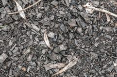 Cendres noires ou texture de charbon de bois, fond Photo libre de droits