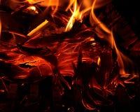 Cenere bruciante Immagini Stock