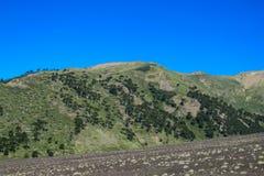Cenere grigia dopo il erruption del vulcano sulle colline verdi Fotografie Stock