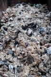 Ceneri e carboni bruciati Fotografie Stock