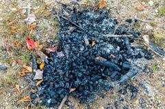 Ceniza y carbones del fuego en Mont Tremblant National Park Foto de archivo