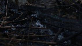 Ceniza y humo del calor de la hoguera Calor acumulado con el calentamiento del planeta O somos la causa de este problema metrajes