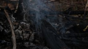 Ceniza y humo del calor de la hoguera Calor acumulado con el calentamiento del planeta O somos la causa de este problema almacen de metraje de vídeo