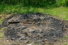 Ceniza y pedazos de ramas en un fuego extinto imagen de archivo libre de regalías