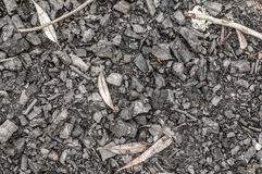 Cenizas negras o textura del carbón de leña, fondo foto de archivo libre de regalías