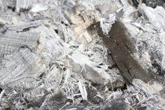 Cenizas quemadas de las ramitas, hierba Imágenes de archivo libres de regalías