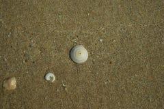 Cenni storici d'annata della spiaggia Immagini Stock Libere da Diritti