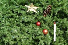 Cenni storici dell'albero di Natale Immagine Stock Libera da Diritti