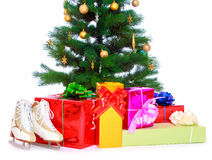 Cenni storici dell'albero di Natale Immagini Stock