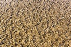 Cenni storici delle ondulazioni della sabbia. Immagini Stock Libere da Diritti