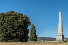 Cenotafiumkrigminnesmärke och träd i Hobart, Australien fotografering för bildbyråer