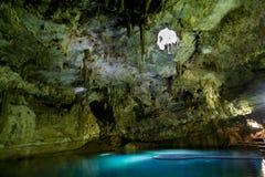 Cenote在Mexcio 免版税库存图片