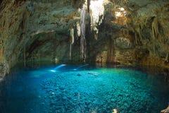cenote墨西哥污水池 免版税库存照片