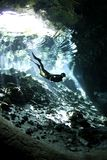 cenote潜水员释放 免版税库存图片