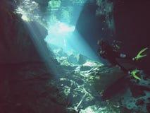 cenote潜水员 库存图片