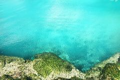 cenote美洲红树玛雅里维埃拉绿松石水 库存照片