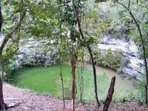 Cenote萨格拉多Xtoloc (神圣的Cenote)奇琴伊察 免版税库存图片